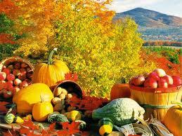 Thanksgiving Fall Image