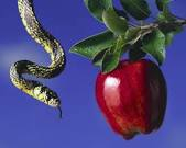 Serpent and the fruit